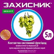ЗАХИСНИК, КС® Фунгіцид системної дії проти широкого спектру хвороб рослин.